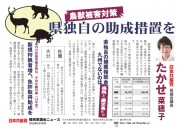 thumbnail of 高瀬菜穂子鳥獣竹林ビラ